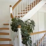 Sytemtreppe mit Innewange und Sproßen weiß , Handlauf und Stufen Buche natur